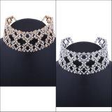Диаманта Rhinestone способа ювелирные изделия ожерелья чокеровщика ворота роскошного блестящего полного одичалые