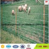 Rete fissa calda dell'azienda agricola della rete fissa del pascolo di vendita con qualità dell'esportazione