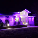 정원 빛을%s SMD5050RGB 60LEDs LED 유연한 지구
