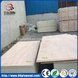 4X8 18mm 100% contre-plaqués de meubles de placage d'Okoume de colle de l'eucalyptus E1 E2