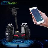 Individu sec d'équilibre de deux roues d'Ecorider équilibrant le char électrique de scooter