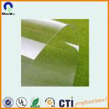 ПВХ Transarent листовой офсетной печати ПВХ пластиковых листов