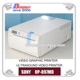 Ultrasound Imaging Scanner를 위한 영상 Printer