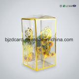 Boîte en plastique transparente magnifique de PVC pour l'empaquetage de bijou