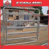 Os rebanhos animais apainelam portas do gado dos painéis da cerca do gado