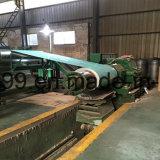 Bobinas de acero galvanizadas prepintadas con la impresión verde de Flweral