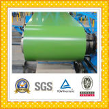 PPGI in Steel Coil & Strip
