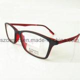 Telaio dell'ottica personalizzato di vendita caldo all'ingrosso di Tr90 Eyewear