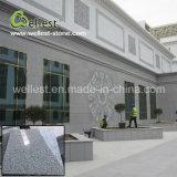 공장에 의하여 규격대로 잘리는 Polished 완성되는 벽 도와 자연적인 G603 달 진주 회색 화강암
