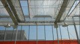[هدب] مضادّة حشية شبكة, نيلون دفيئة شبكة, دفيئة حشية شبكة