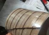Phenolic Ring, de Ring van de Slijtage, de Ring van de Gids PTFE, de TeflonRing van de Gids