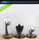 De uitstekende Extra CirkelStolp van de Glazen kap van de Vertoning van het Glas