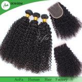 Le cheveu cambodgien cru bouclé crépu, embrouillent libre, cloche de minimum, prolonge de cheveux humains de 100%
