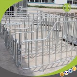 Sale를 위한 가축 Equipment Pig Gestation Crates Stall /Limit Crates /Pig Cage