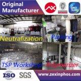 Industrial Grade STPP Fabricant de STPP