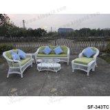 Jogos ao ar livre do sofá, mobília do Rattan do pátio, jogos do sofá do jardim (SF-343)