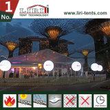 25X25m Ereignis-Festzelt-Zelt mit transparentem Dach und Seitenwänden