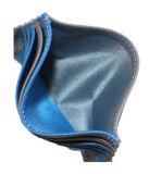 2016 borsa multi di cuoio di vendita calda (HW250010)