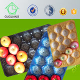 Thermoformed Perforated FDA/SGS custom -Made Thermoformed Fruits en Vegetable Display Tray in Walmart in Food Grade
