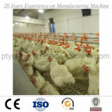 2017 Advanced Automático Poultry Equipment for Broiler Chicken