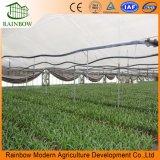 Túnel agrícola cubierto de plástico de la película Wide Single Span de invernaderos comerciales