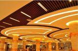 Modèle décoratif suspendu à extrémité élevé personnalisé de plafond en métal