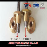 tornillo de posicionamiento de la cumbre del acero inoxidable del diámetro de 10m m Tr10*10 para la impresora 3D