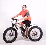 Rotelle grasse della bici della bici della forcella grassa della sospensione