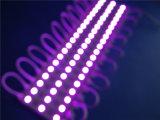 El alto brillo IP65 impermeabiliza el módulo de 5050 LED