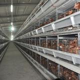Hは層の鶏のケージの家禽のオート機能の換気装置を録音する