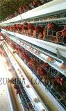 ISO9001の層の鶏のケージの大きい容量