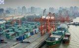 Taxa de Lowerset para o transporte de LCL/FCL/Consolidation Seafrieght