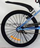 20 '' mini bicyclettes d'exercice/vélo de montagne pour les enfants (SH-MTB015)