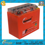 SiegelMf Motorcycle Gel Battery 12V7ah 12n7d Rechargeable Lead Acid Battery Motorcycle Parts Motorcycle Battery Manufacturer