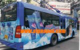 Vinyle auto-adhésif pour le bus (SAV12140)