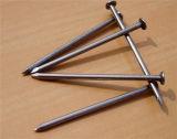 Fabrik-Preis-heißer Verkaufs-nagelt geläufige Draht-Nägel, Draht Nagel ohne Kopf