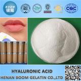 Pharmazeutische Anwendungs-Hyaluronic Säure-Verbindungs-Einspritzung