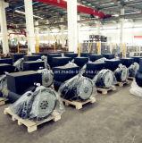 Alternadores dobles del rodamiento usados en motor marina