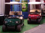 4 Seaters 전기 클럽 골프 카트