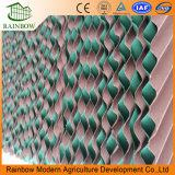 온실을%s 녹색 셀루로스 패드