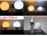 Bulbo grande 360 del globo de la ampolla LED