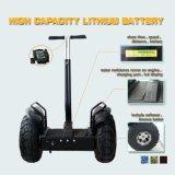 Individu équilibrant le scooter électrique bon marché de transporteur de vent de Rover deux de char électrique personnel de roue pour des adultes