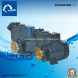 Gp 125 0.25kw/0.3HP 이라크 시장을%s 전기 수도 펌프 220V/110V