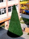 Большие рождественские елки (DKT12M)