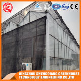 Дом огорода земледелия Китая Toughened стеклянная зеленая