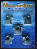 Eisen Vorhängeschloss, Vorhängeschloss mit Stahl-Master Key Lock (AL-40, AL-50)