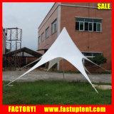 Tenda impermeabile a prova di fuoco del giardino dello schermo della stella del coperchio della tenda