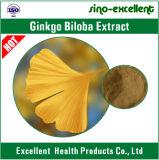 100% natürliches Ginkgo Biloba Auszug-Puder