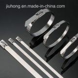 Fermo del collegare di serratura del piatto dell'acciaio inossidabile