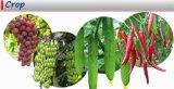 Bio ácido soluble en agua el 80% de Fulvic para la agricultura